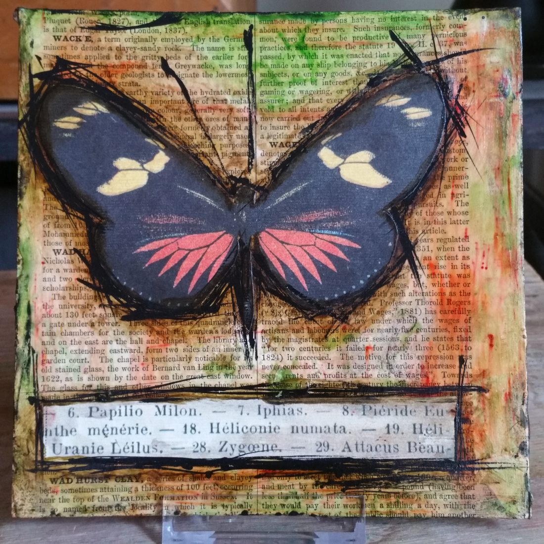 Color Burst Butterfly Collage